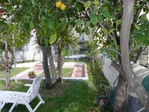Garden House, Bed and breakfasts  Ercolano - big - 20
