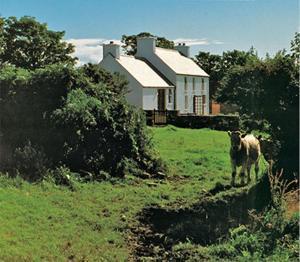 Cashelfean House 1