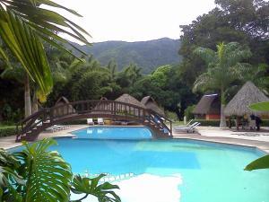 dex3 aventuras, Hotels  Jalcomulco - big - 7