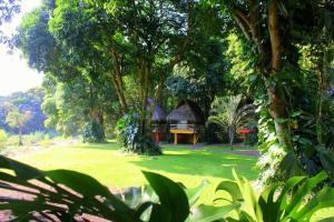 dex3 aventuras, Hotels  Jalcomulco - big - 1