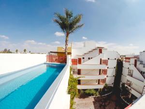Suites Rusa, Aparthotels  San Luis Potosí - big - 6
