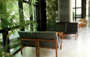 Hotel Numi & Medusa, Отели  Чезенатико - big - 36