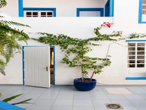 Bungalow Pasito Blanco Porto Mare 44, Holiday homes  Pasito Blanco - big - 8