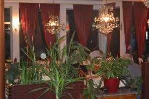 Hotel Octagon - фото 14