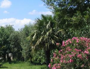 Agriturismo Villa Gioia