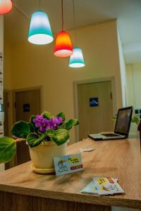 obrázek - Centre Hostel