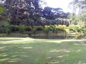 Rincon Verde, Bijagua