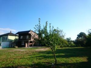 Гостевой дом На Лакоба 4 - фото 9