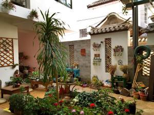More Fun, Hostels  Dali - big - 26