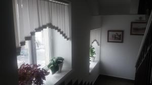 Гостиница Семей - фото 25
