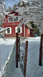 Holiday house Chaika 3