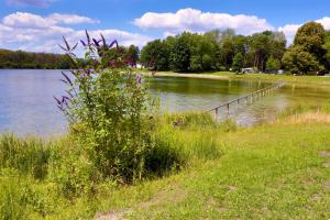 AZUR Waldcamping Auwaldsee, Üdülőközpontok  Ingolstadt - big - 23
