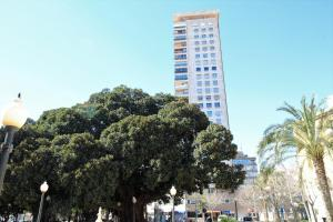 Torre Alicante Apartments, Apartmány  Alicante - big - 16