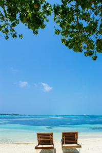 Luxury Beach Maldives, Affittacamere  Guraidhoo - big - 16