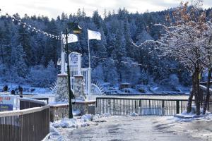Mile-Hi Cabin in Lake Arrowhead