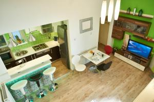 Studio Apartment Green Wall