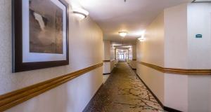 Best Western PLUS Newport Mesa