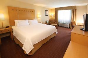 Holiday Inn Express Hotel & Suites CD. Juarez - Las Misiones, Hotel  Ciudad Juárez - big - 11