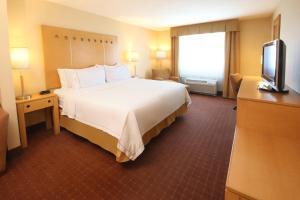 Holiday Inn Express Hotel & Suites CD. Juarez - Las Misiones, Hotel  Ciudad Juárez - big - 8