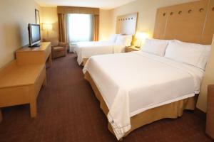 Holiday Inn Express Hotel & Suites CD. Juarez - Las Misiones, Hotel  Ciudad Juárez - big - 3