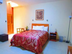 Palau Amazonas Hotel, Szállodák  Iquitos - big - 37