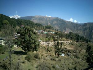 House in Dharamshala near Dalai's Abode, Homestays  Dharamshala - big - 18