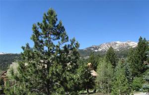 Summit 287, Prázdninové domy  Mammoth Lakes - big - 10