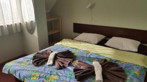 Terve Hostel