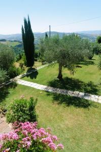 Tenuta Sant'Apollinare, Дома для отпуска  Mondaino - big - 52