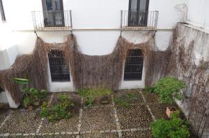 Tesoro De Sevilla, Appartamenti  Siviglia - big - 4