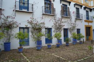 Tesoro De Sevilla, Appartamenti  Siviglia - big - 2