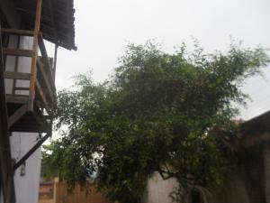 Adubai Hostel, Hostelek  Alto Paraíso de Goiás - big - 17