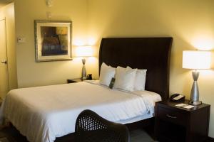 Hilton Garden Inn Clarksville, Szállodák  Clarksville - big - 15