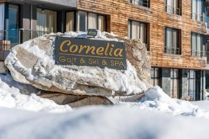 Cornelia Boutique & SPA, Apartmánové hotely  Bansko - big - 57