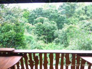 Pondok Pinang Homestay, Homestays  Licin - big - 16