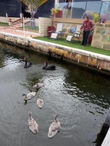 Yunderup Canal Getaway