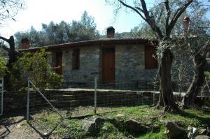 Gera's Olive Grove - Elaionas tis Geras