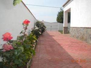 Casa Manolo II, Nyaralók  Vejer de la Frontera - big - 7