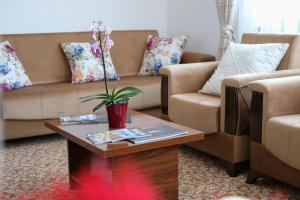 New Hotel - фото 4