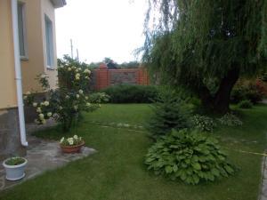 Guest House in Kilyakovka