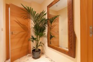 La Banda Spaces-Soho Lounge, Apartmány  Seville - big - 13