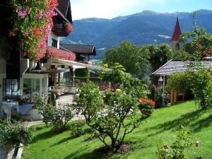 obrázek - Alpenrose