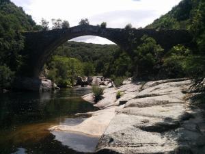 Corsica Monti