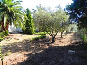 Villa Eleonora, Vily  Tropea - big - 87