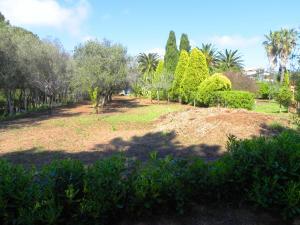 Villa Eleonora, Villen  Tropea - big - 89