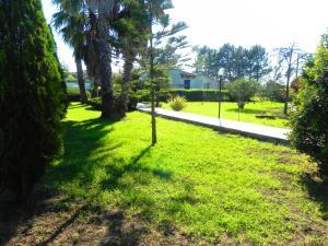 Villa Eleonora, Villen  Tropea - big - 79