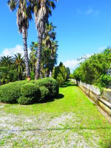 Villa Eleonora, Villen  Tropea - big - 80