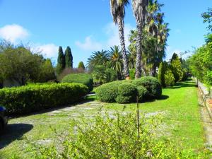 Villa Eleonora, Villen  Tropea - big - 56