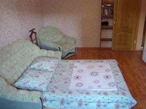 Shalom apartments on Ustinova