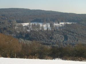 Aux Quatre Saisons, Dovolenkové domy  Ferrières - big - 8